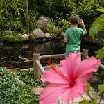 Singender_Wassergarten