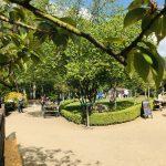 Aktuelle Regelungen bezüglich Corona im Garten